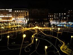 field-of-lights7