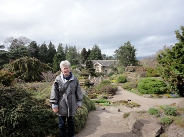 Caledonian rock garden