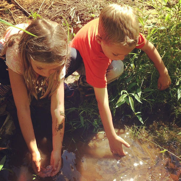 Trying to Catch Tadpoles