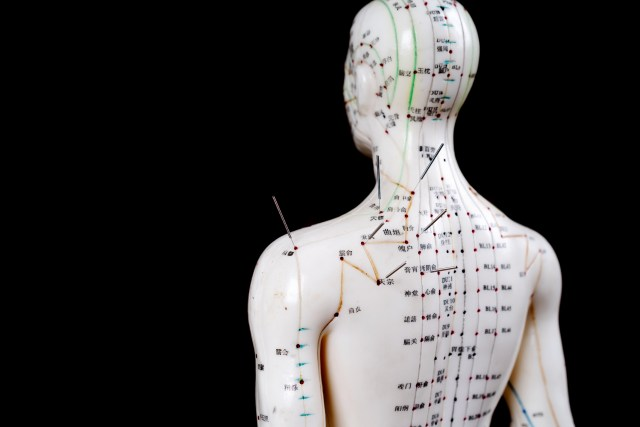 male acupuncture model with needles on black background