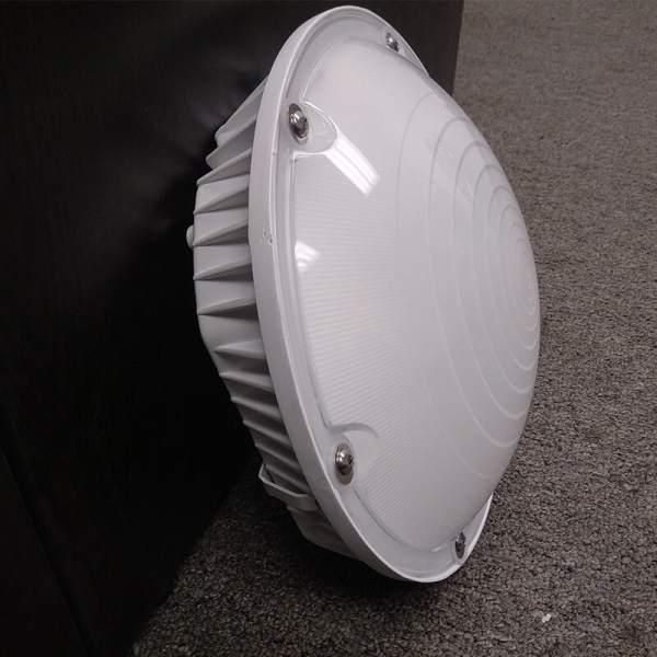 LED Canopy light