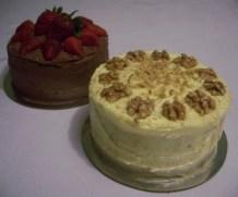 Chocolate Mudcake & Carrot cake