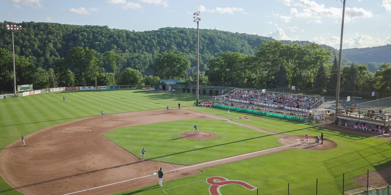 Haggerty returning in 2019 to lead the Mohawk Valley DiamondDawgs
