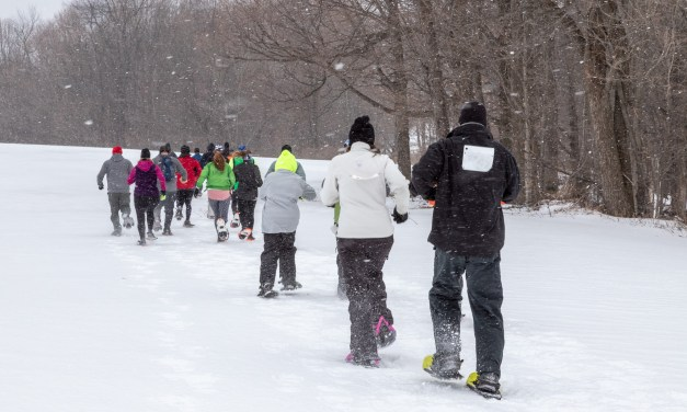 The Green is White Snowshoe Race scheduled