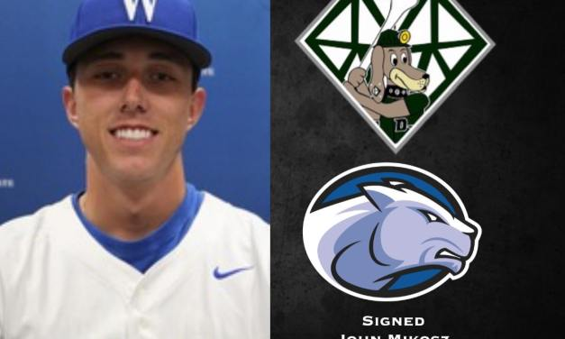 DiamondDawgs sign another 2020 player