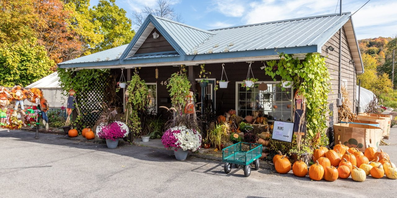 A&W Greenhouse and Gardens hosts Harvest Day event