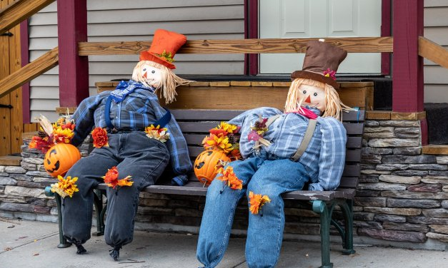Think Local Little Falls to host Octoberfest