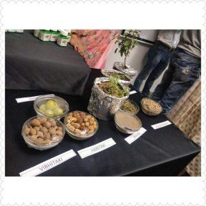 Nutrilite Traditional Herbs range