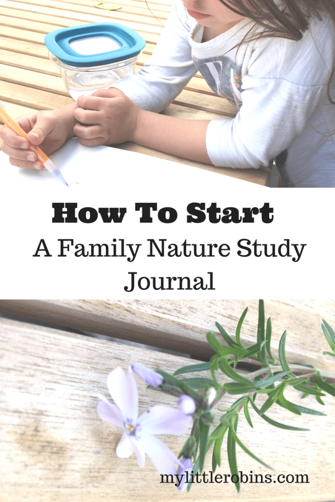 How to Start A Family Nature Journal