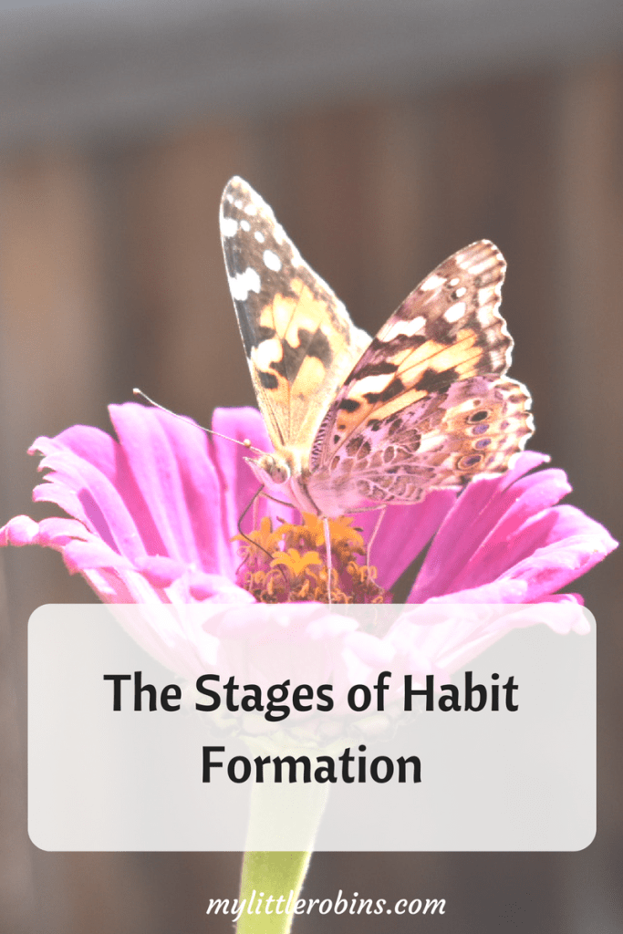 The Stages of Habit Formation