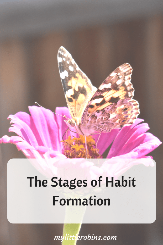 #CharlotteMason explained the stages of #habit formation in Home Education. This is how you can help your child form positive habits.