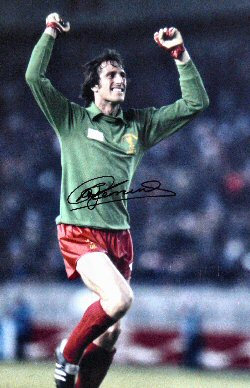 one and a half chair turquoise patio chairs my wall of fame - ray clemence