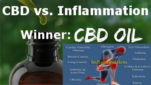 CBD vs. Inflammation