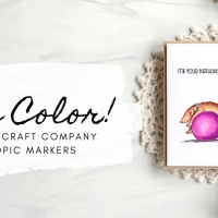 Real-Time Copic Coloring Video + Free Shipping Code