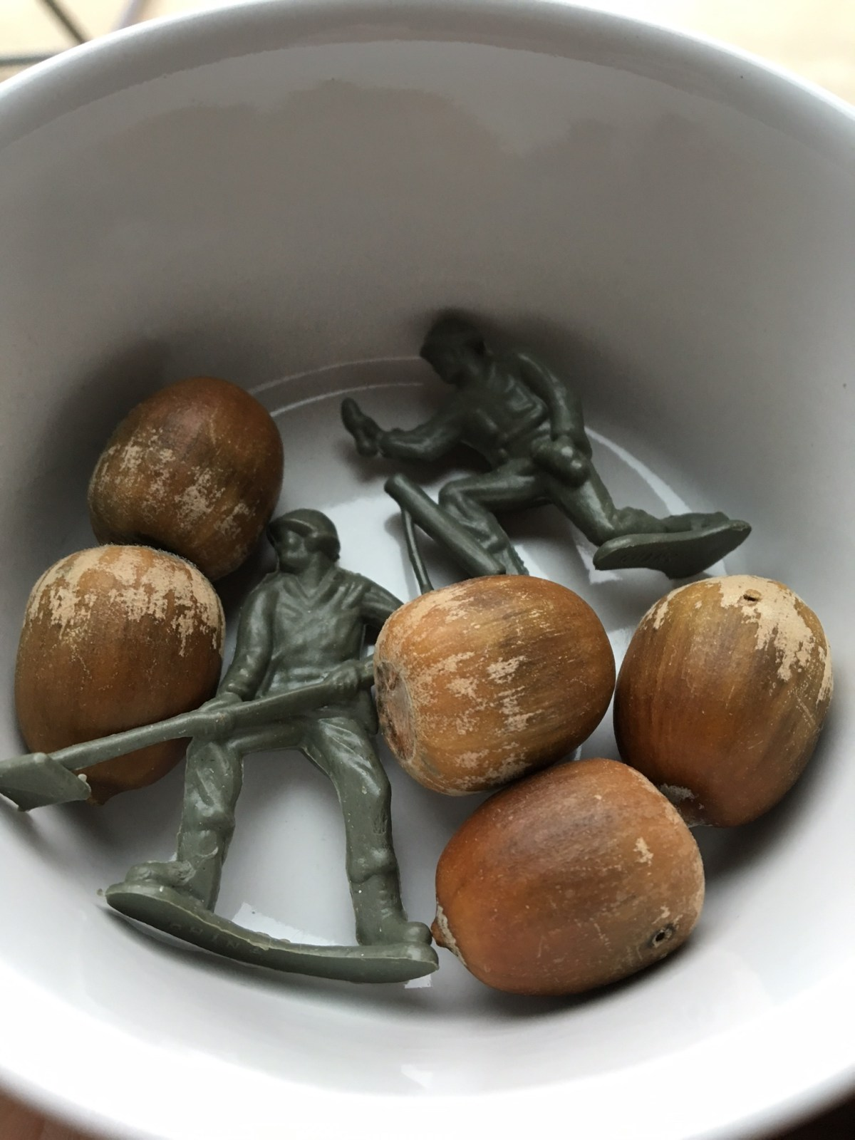 acorns_armymen_use