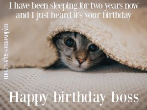 Happy Birthday Boss Meme Funny With Quotes ( 2020 )