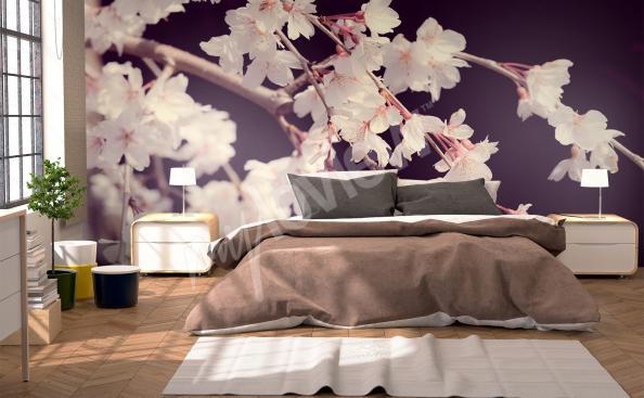 Papiers peints Chambre  coucher mur aux dimensions  myloviewfr