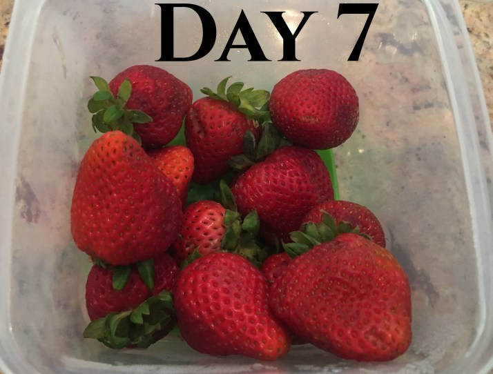 Ok, so some of us would have gobbled up these strawberries already, but here is how they looked after 7 days in the refrigerator.  The berries in the original container are mushy and discolored,  I would not be using these in my strawberry trifle!   However, the others are still good enough to eat!