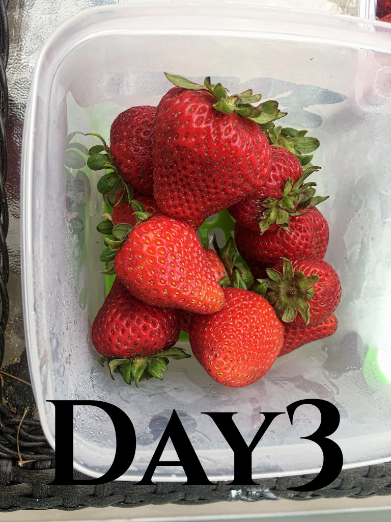 Keep fruit fresher longer.