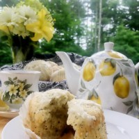 Best Ever Lemon Poppy Seed Cupcakes