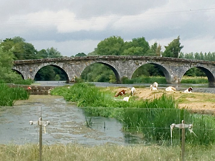 Bridge in Bennettsbridge, Kilkenny Co.