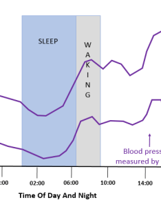 This chart shows the typical hour blood pressure variation in someone with white coat hypertension it normal fall that also lower your fast rh mylowerbloodpressure