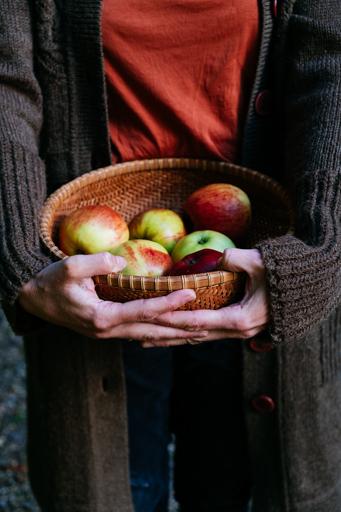 foto appels