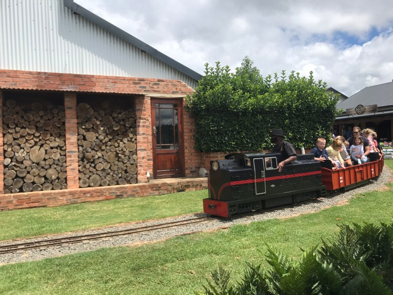 Children ride on the Choo Choo Train at Piggly Wiggly