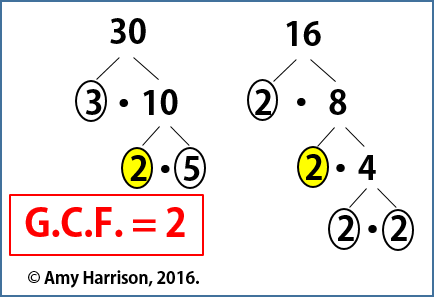 GCF Foldable