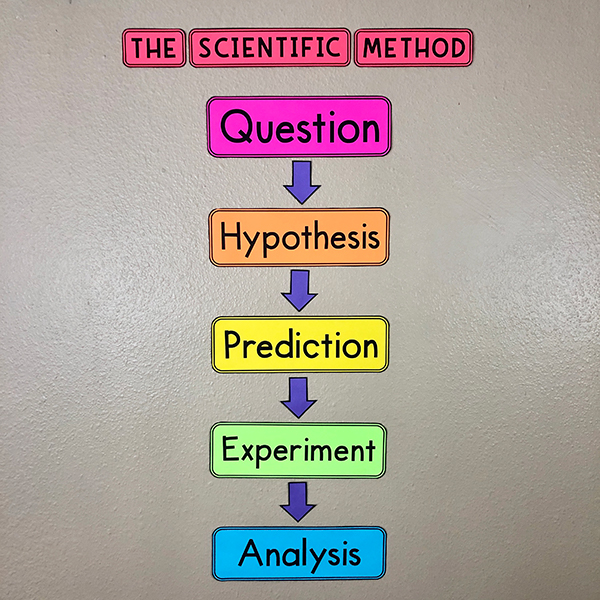 Scientific Method Bulletin Board Poster