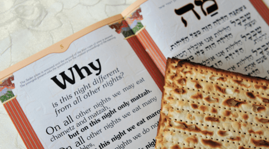 passover-purpose-of-questions