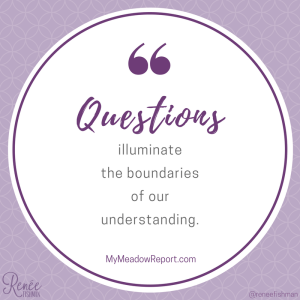 Questions illuminate the boundaries of our understanding