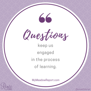 Questions keep us engaged in the process