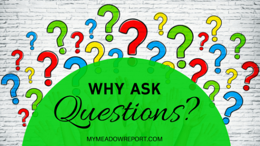 why-ask-questions_title