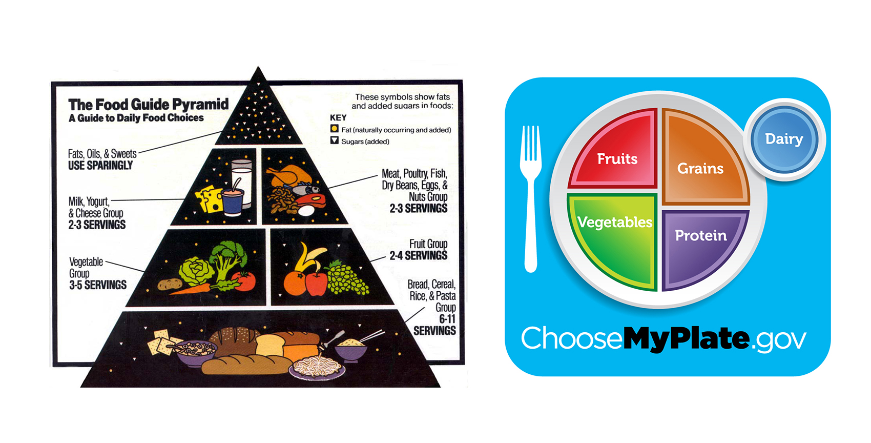 Replacing The Food Pyramid With Myplate Part 3