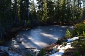 First Snow/Frozen Pond