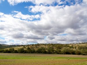landscape around Toodyay