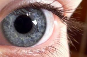 Pupil2