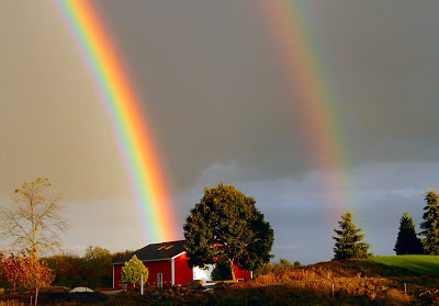 97439-rainbow
