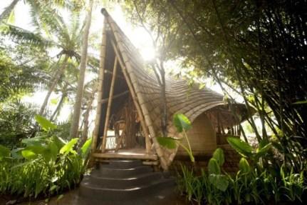 The Green Village - PT Bambu1