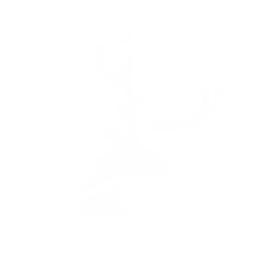 Logo Mono Skill Concept