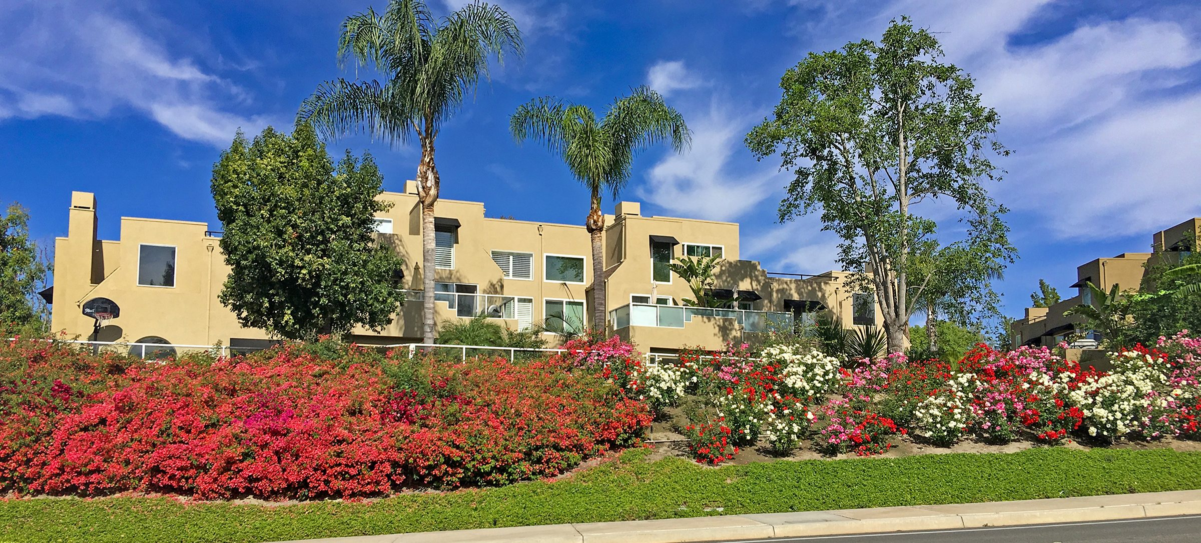 Condos in Mission Viejo for Sale Jackie Gibbins Just Listed Condos in Mission Viejo