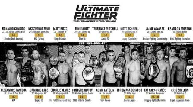 Cast of The Ultimate Fighter Season 24 Revealed