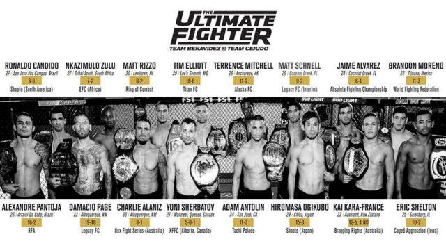 The Ultimate Fighter Season 24