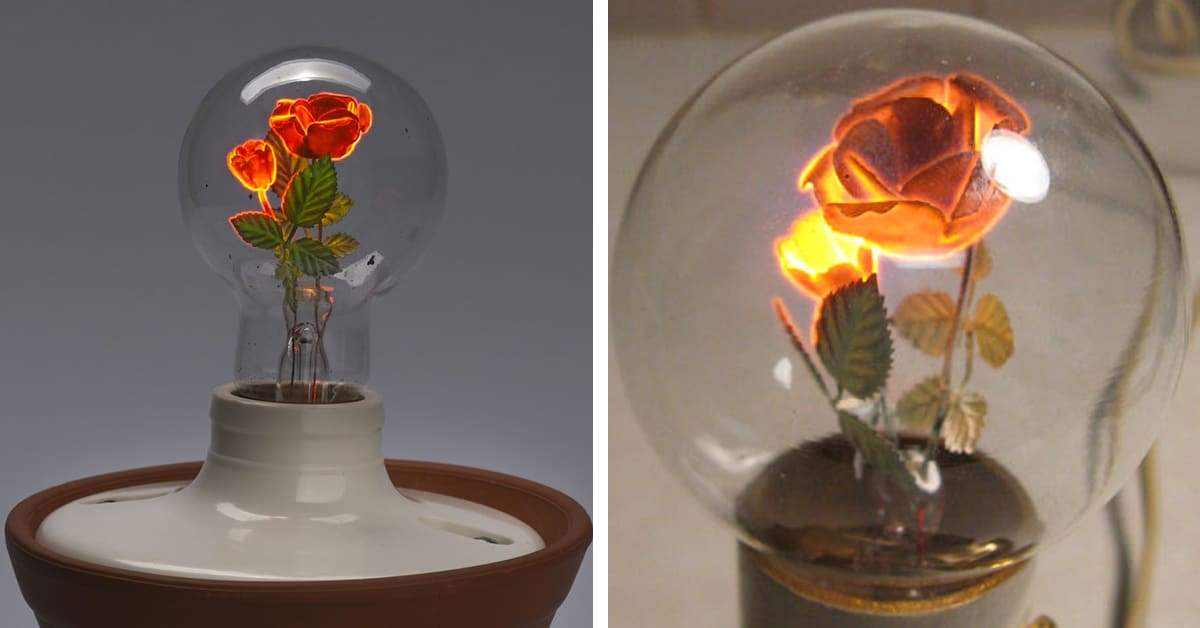 Aerolux Light Bulbs With Floral Filaments Add Beauty to