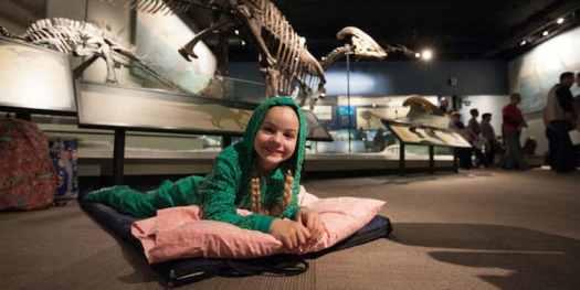 Museum Sleepovers Chicago Field Museum Night at the Museum