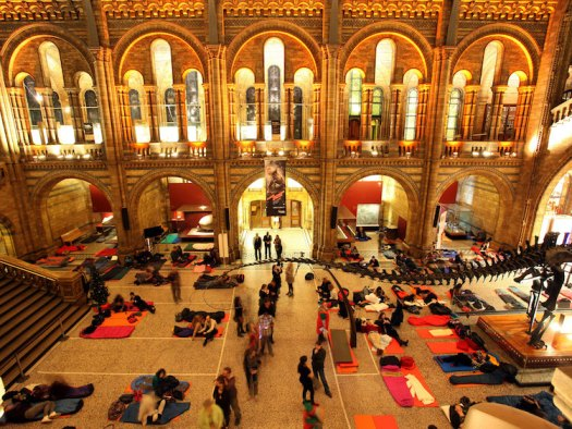 Museum Sleepovers Natural History Museum London Sleep at a Museum