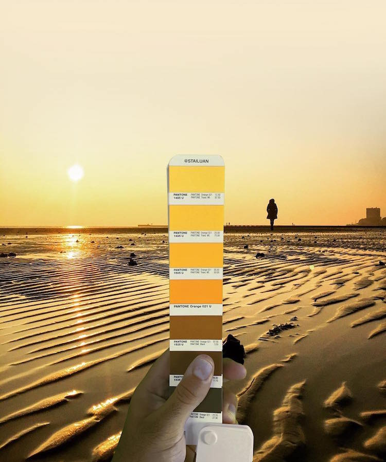 Graphic Designer Photographs Collection of Pantone