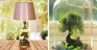 Terrarium Lamp Base Turns Ordinary Lighting Into ...
