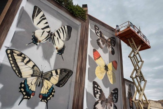 Butterfly Murals by Mantra